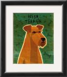 Irish Terrier Prints by John Golden