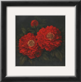 Red Carnation with Border II Print by T. C. Chiu