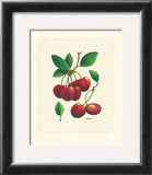 Cherries Art by Linda Casey