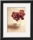 Cut Flowers IV Prints by Vincenzo Ferrato