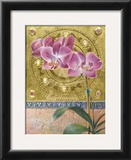 Phalaenopsis Orchid Prints by Fred Wessel