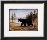 Majestic Bear Prints