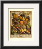Fruits of the Season, Winter Prints by Robert Furber