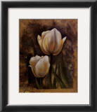 Twin Tulip II Prints by Rumi 