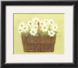 White Flowers in Wicker Basket Poster by Cuca Garcia