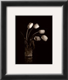 Dramatic Tulips Art by Mark Polomchak