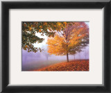 Autumn Mist Posters by Mike Jones