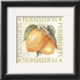 Persimmon Print by Michael Alexander