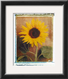 Sunflowers Print by Vincenzo Ferrato
