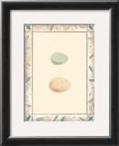 Antique Eggs II Poster
