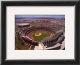 Oakland: Network Associates, Athletics Baseball Print by Mike Smith