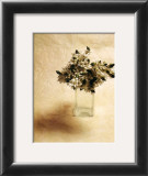 Cut Flowers II Prints by Vincenzo Ferrato