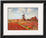 Tulip Fields with the Rijnsburg Windmill Prints by Claude Monet