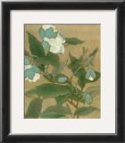 Magnolia and Praying Mantis Prints