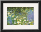 Water Lilies of the Orangerie as Giverny Posters by Claude Monet