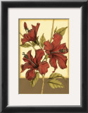 Sophisticated Hibiscus II Poster by Jennifer Goldberger