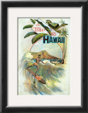 A Trip to Hawaii Art