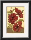 Sophisticated Hibiscus I Prints by Jennifer Goldberger