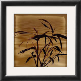 Bamboo Waves I Prints by Thomas Kalwa