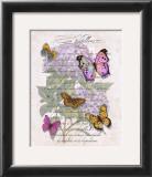Hydrangea Butterflies II Art by Ginny Joyner
