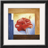 Passionate Poppies I Prints by Alfred Gockel