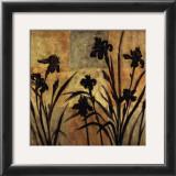 Iris Silhouette II Prints by Erin Lange