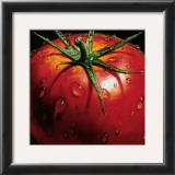 Tomato Prints by Alma&#39;ch 