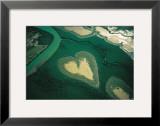 Coeur de Voh Posters by Yann Arthus-Bertrand