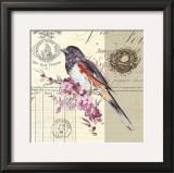 Bird Sketch III Prints by Chad Barrett