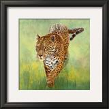 Kalina, le Jaguar Print by Danielle Beck