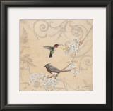 Hummingbird and Cherry Prints by Jill Schultz McGannon