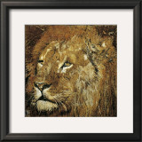 Lion Portrait Prints by Fabienne Arietti