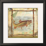 Trout Nature Posters by Walter Robertson