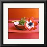 Anemone Rouge Art by Amelie Vuillon