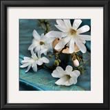 Magnolia Art by Catherine Beyler