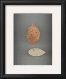 Assemblage No. 78 Art by John Watson