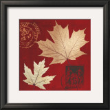 Crimson Plane Maple Prints by Booker Morey