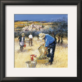 La Cueillette des Olives Print by Andre Deymonaz