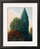 Tuscan Trees II Prints by Alan Stephenson