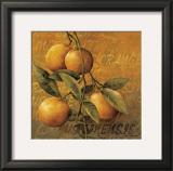 Orange Branch Poster by Linda Thompson