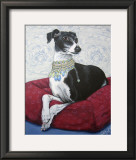 Italian Greyhound on Red Prints by Carol Dillon