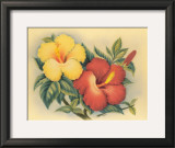 Hawaiian Hibiscus Posters by Eve Hawaii