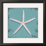 Distressed Seashells: Starfish II Posters by Melody Hogan
