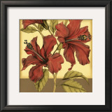Cropped Sophisticated Hibiscus II Posters by Jennifer Goldberger