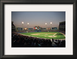 Chicago Comiskey Park Prints by Ira Rosen