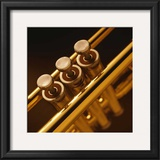 Trumpet II Prints by Steve Cole