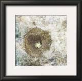 Nest Egg Prints by Susan Friedman
