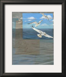 Three White Gulls III Prints by Tara Friel