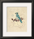 Filigree Jay Print by Chad Barrett