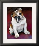Bulldog Baby Posters by Robert Mcclintock